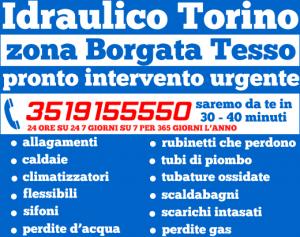 idraulico torino zona Borgata Tesso